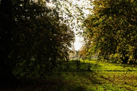 Hyde Park autumn (15)