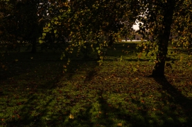 Hyde Park autumn (16)