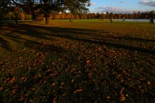 Hyde Park autumn (22)