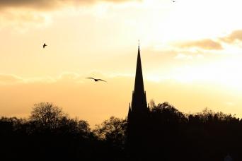 Hyde Park autumn (24)