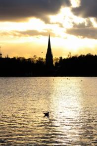 Hyde Park autumn (26)
