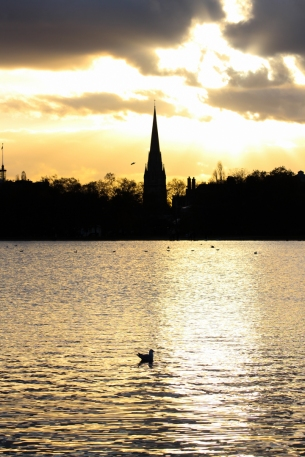 Hyde Park autumn (26)